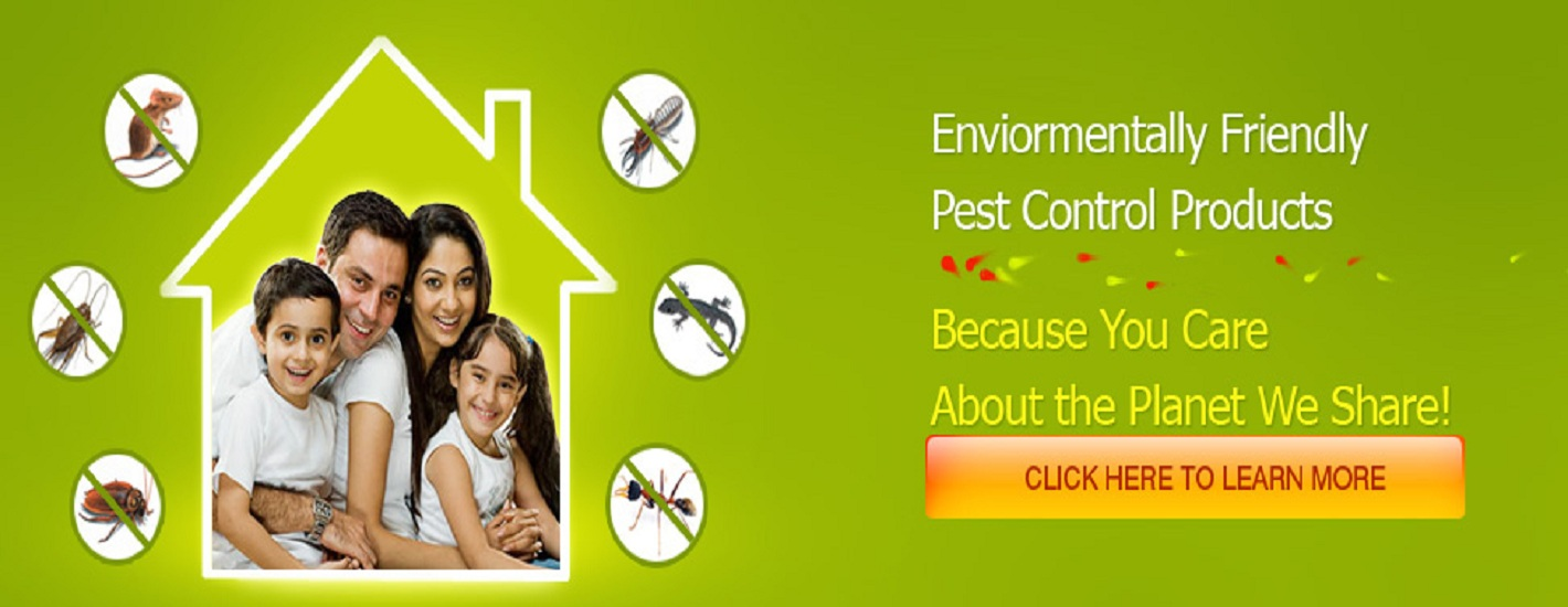 Environment Friendly Pest Control